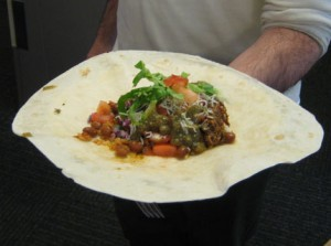 This is a picture of a burritto